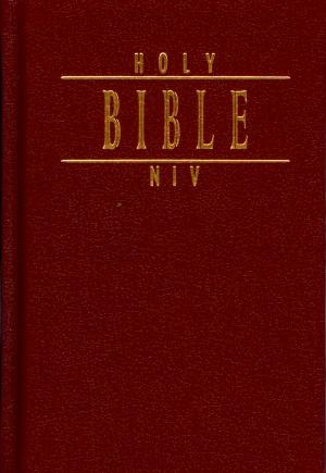 Holy Bible/ New international Version