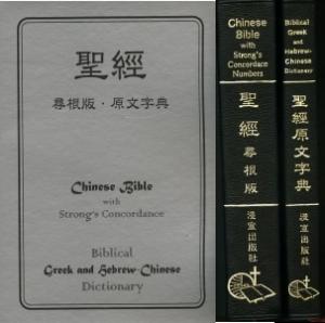 聖經尋根版原文字典